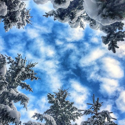 everyone should look up from time to time... #Cech #Carna #Hora #winter #snow #sky #clouds #trees