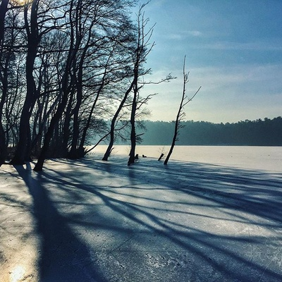 Winter is still here... #winter #sun #lake #ice #shadow #tree #poland #iphone #landscape #mood #magic #twoshots